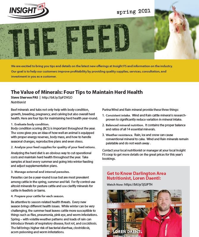 The Feed - Spring Issue